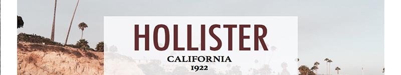 hollister_banner